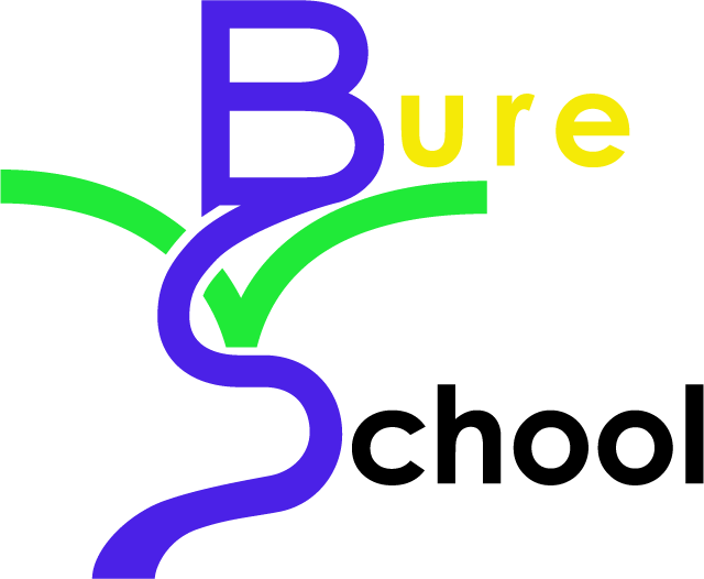 Bure Valley School